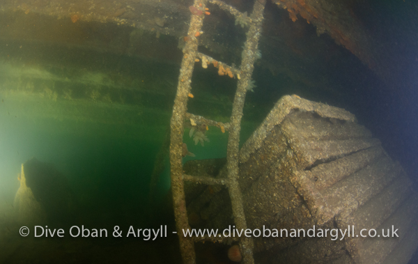 breda, wreck, hold, shipwreck, oban, heinkel, bomb, ardmucknish, dive, scuba, diver, diving, hold